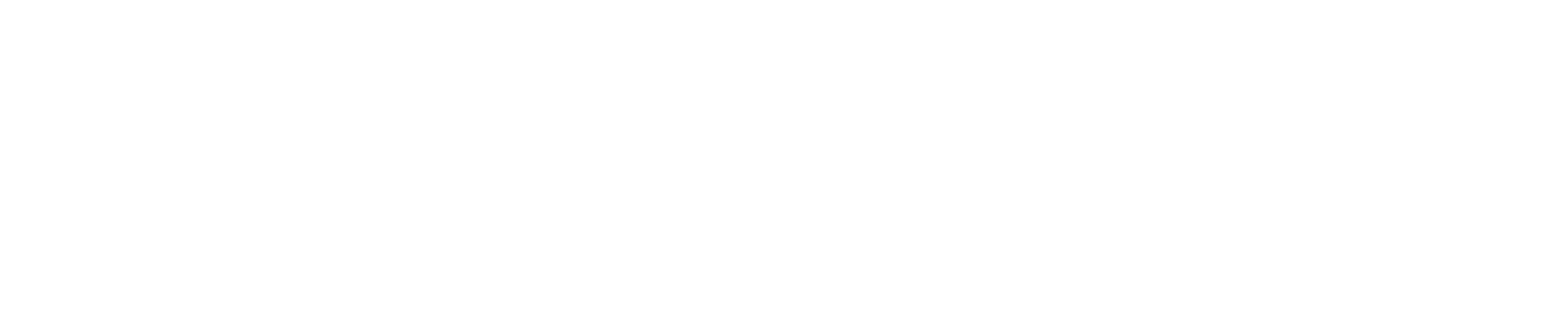 DataStealth Logo 2018 WHITE-1.png