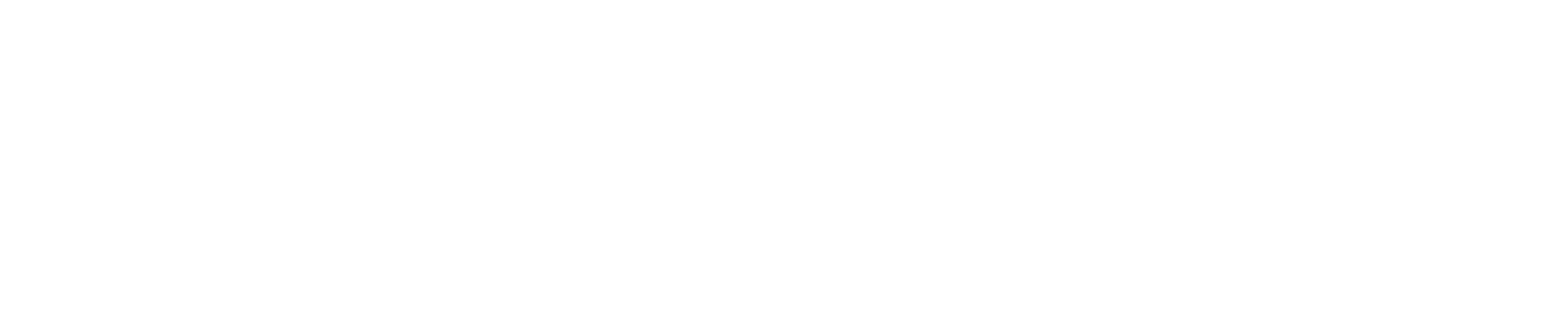 DataStealth Logo 2018 WHITE